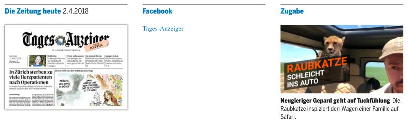 tagi-facebook-ohne.png